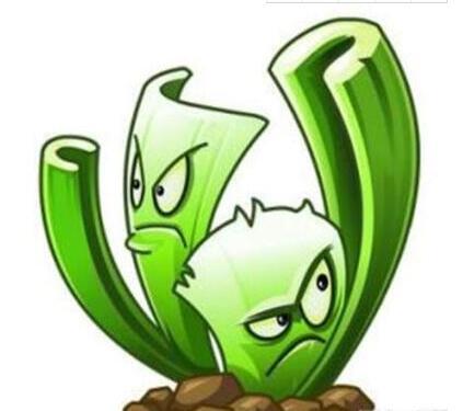 植物大战僵尸2如何快速进阶