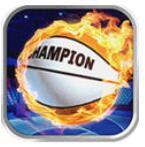 篮球冠军手游中文版 v1.1.3